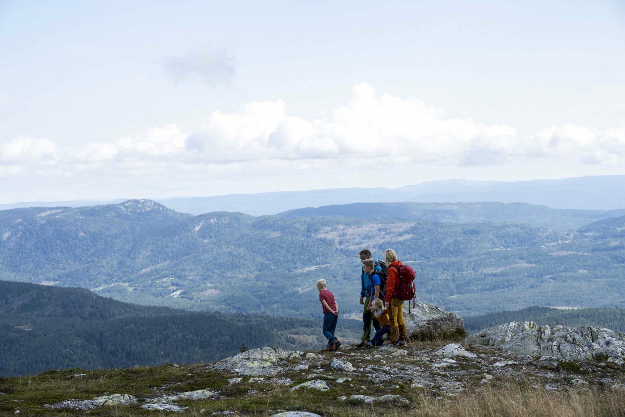 Utsikt over Bø og Telemark fra Lifjell